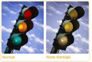 Renk Körlüğü Belirtileri Tedavisi Istanbul Retina Enstitüsü